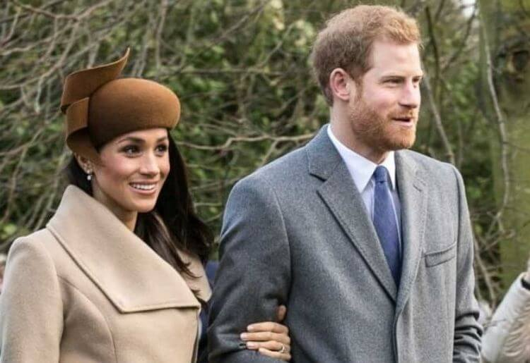 Meghan and Harry are Opting Out of the British Royal Family. Can DNA Tests Help Us Locate the Royalty Within Ourselves?