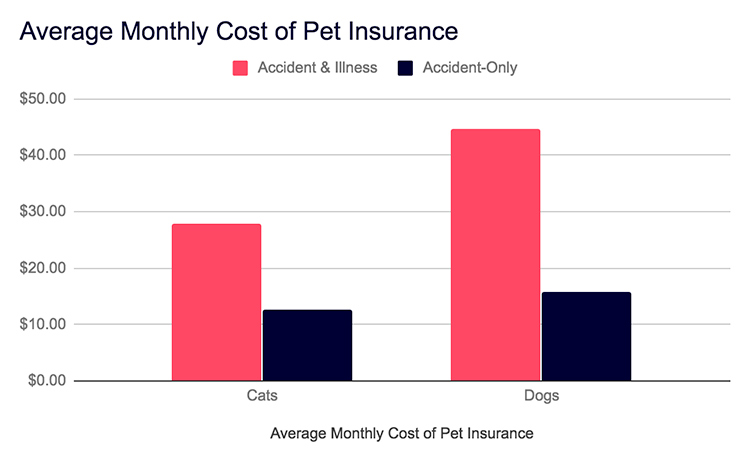 Average Monthly Costs of Pet Insurance