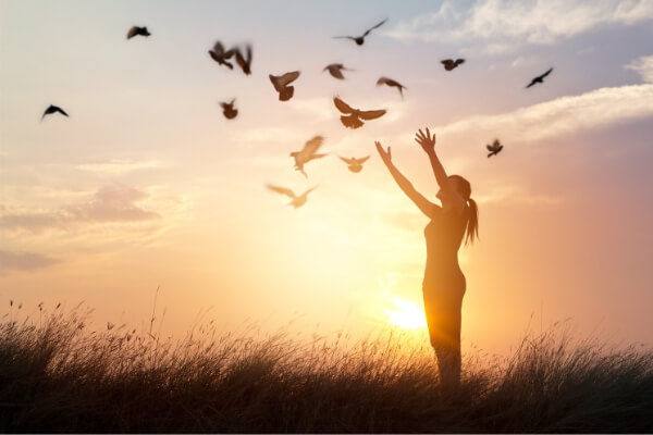 7th Sense Psychics Review - Get the guidance you need