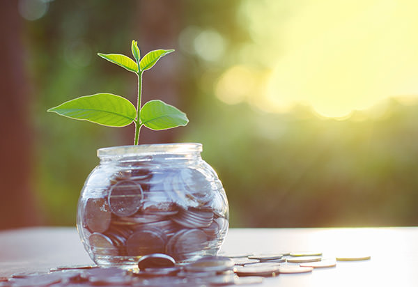 Tiger Funding MCAs can grow your business