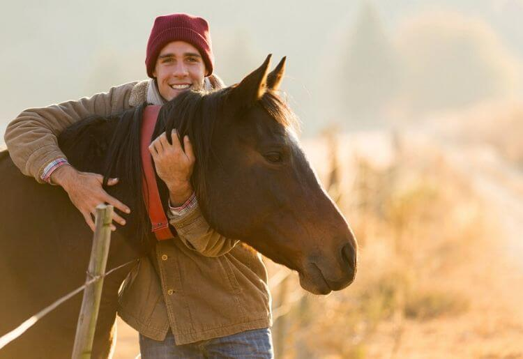Horses a poplar choice when it comes to online dating images