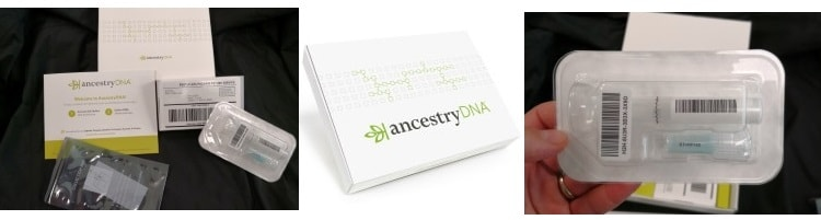 Mega charticle AncestryDNA